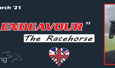 Team Endeavour the Horse – The latest update…