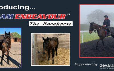 Team Endeavour, the Racehorse!
